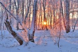 Зимние картинки