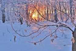 Сибирские морозы