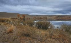 Скромный пейзаж алтайских степей