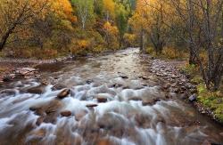 Бурное течение горной реки