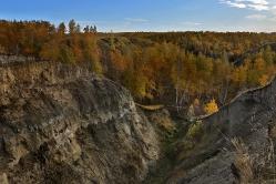 Берег Драверта, Омская область