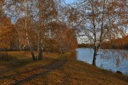 На берегу озера.  Омская область, Кормиловский район, д. Зотино