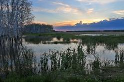 Живописное болото, с. Сосновка, Азовский район, Омская область