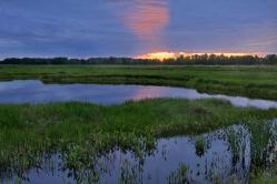 Летний закат в д. Никоновка Горьковский район, Омская область