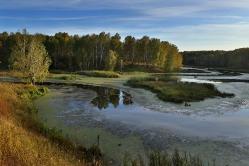 Река Артынка, с. Костино, Муромцевский район, Омская область