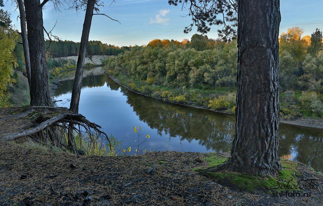 Сибирская река Тара