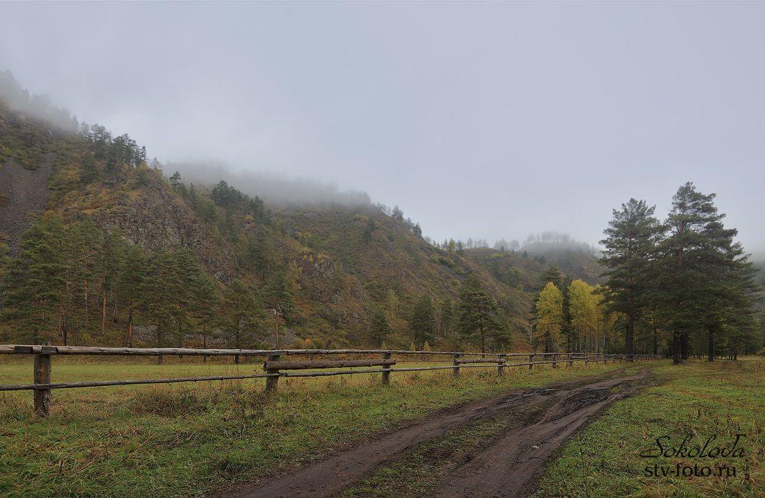 Туманное утро сентября